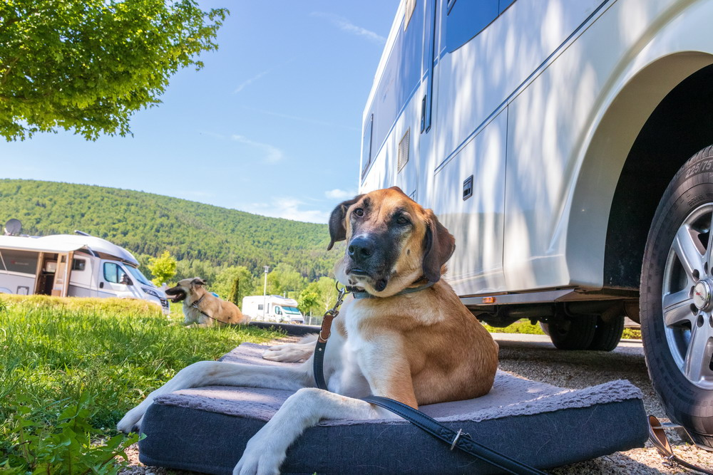 4 Ways Air Can Make a Difference When You're RV Camping